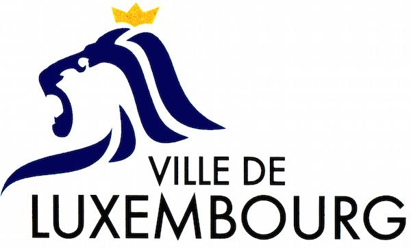 logo_vdl-3.jpg